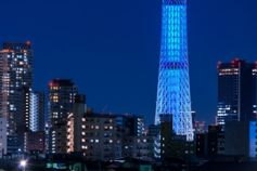 The view of buildings in Tokyo under the blue night sky.