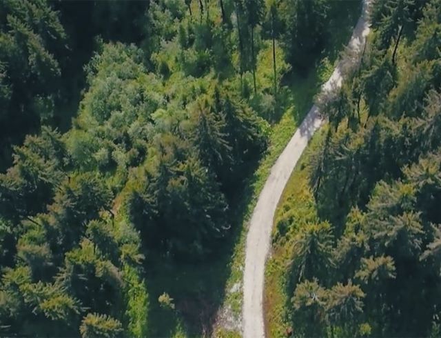 Aerial view Long narrow road in the middle of the forest