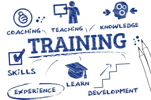 Training and Improvement Opportunities