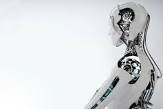 Profile of a robot