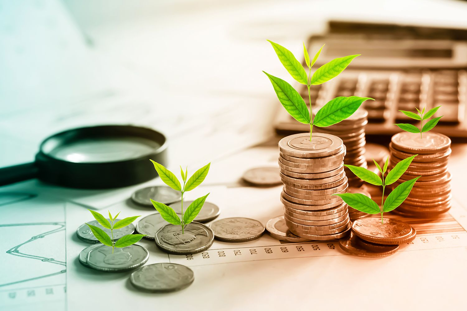 Green and Sustainable Banking - The HKMA's Common Assessment Framework