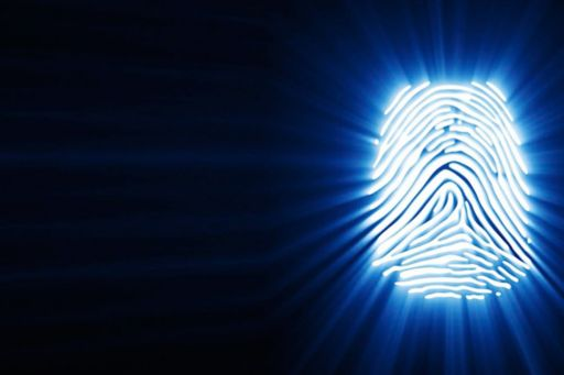 Trends in biometrics – Are you ready to manage cybersecurity and privacy risks?