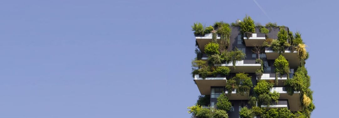 Vertical view of  building with plants