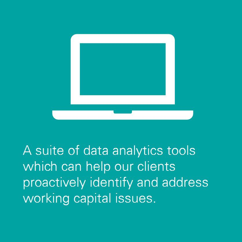 A suite of data analytics tools which can help our clients proactively identify and address working capital issues.