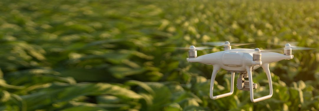 White drone flying over green fields